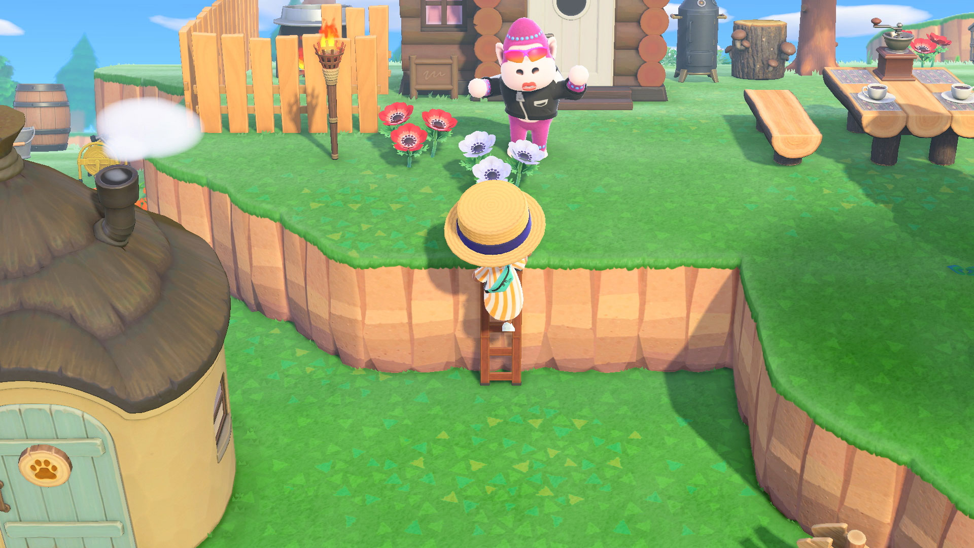 how to get a ladder in animal crossing
